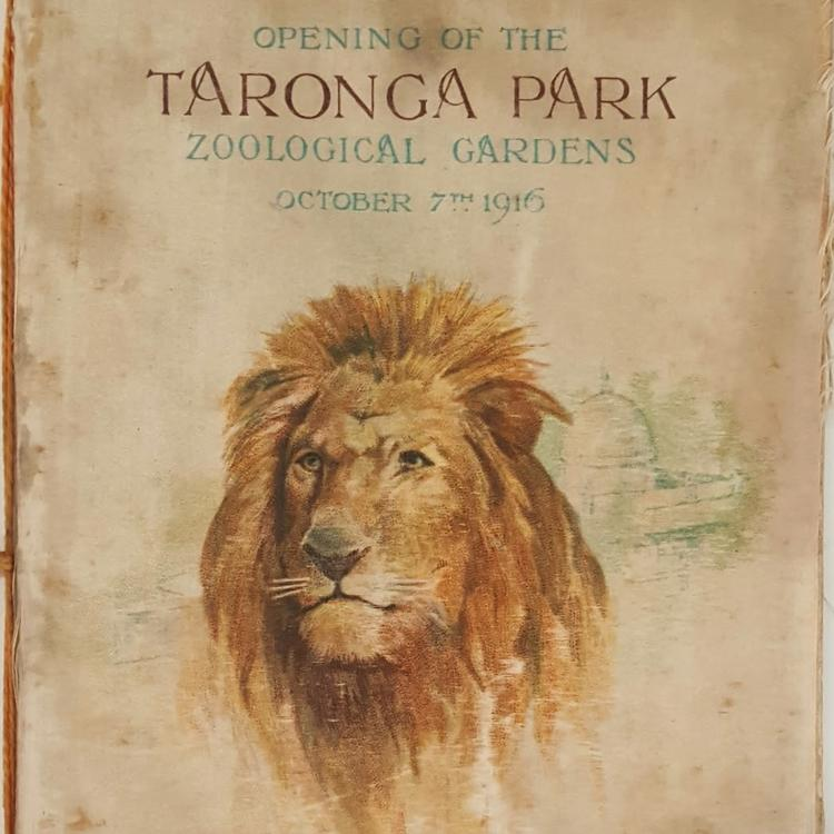 Itinerary booklet produced for the opening of the Taronga Park Zoo