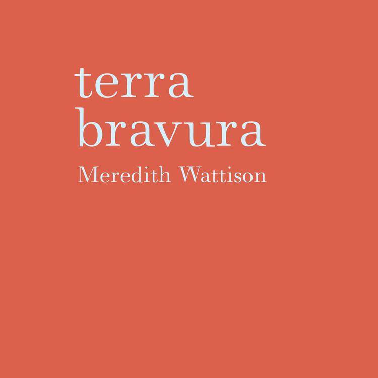 cover of terra bravura