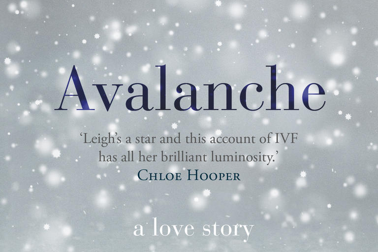 Book cover for Avalanche by Julia Leigh