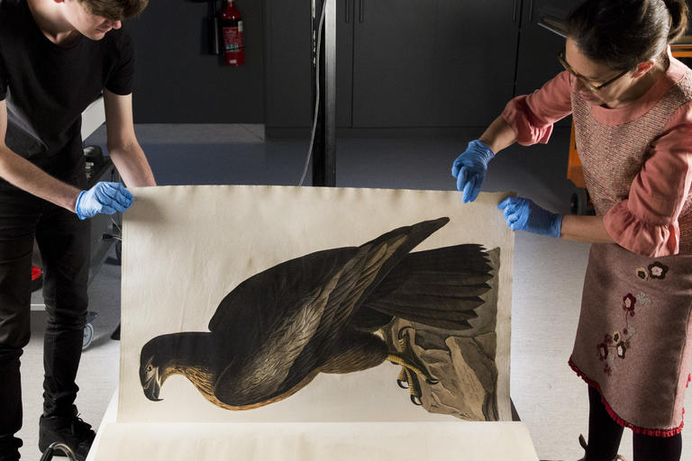 State Library staff digitising painting