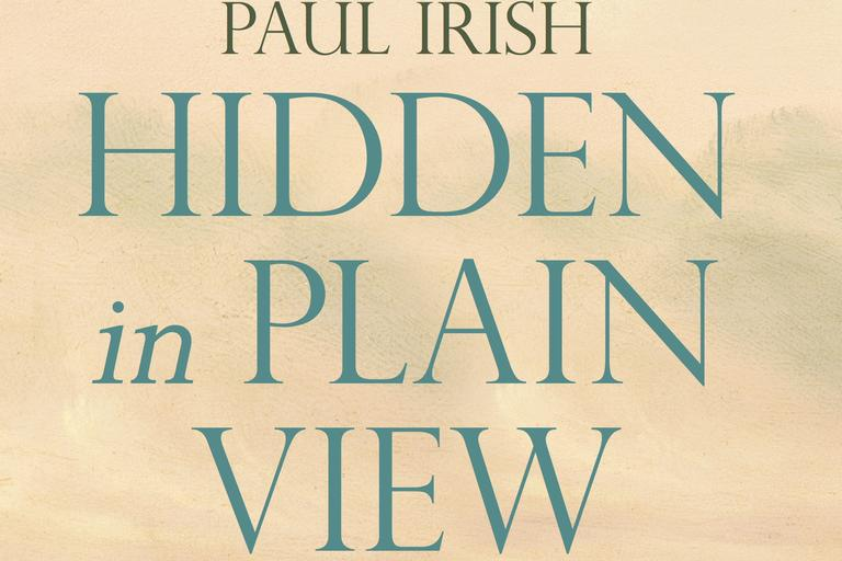 book cover image of hidden in plain view