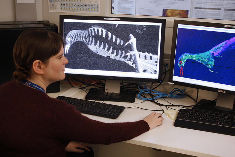 Conservator Kate Hughes examining Synchrotron images of natural history drawings from the 1790s.
