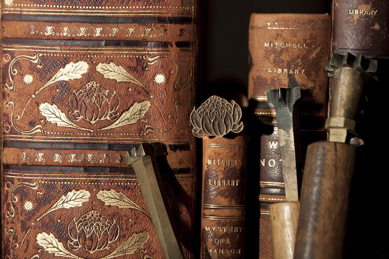 Old brown leather books on bookcase