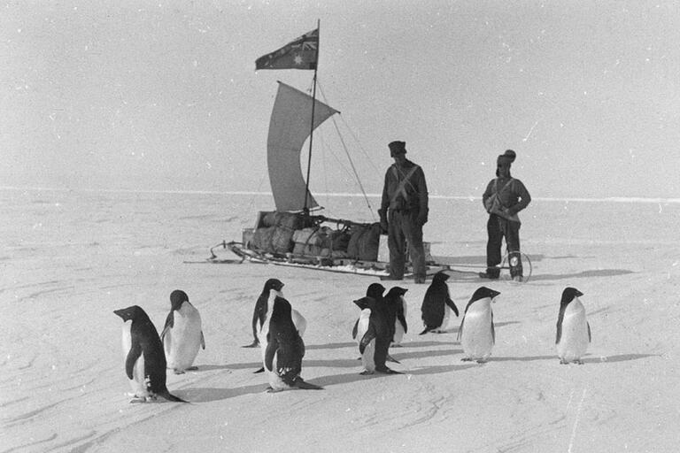 Mawson's other photographers, 1911–14