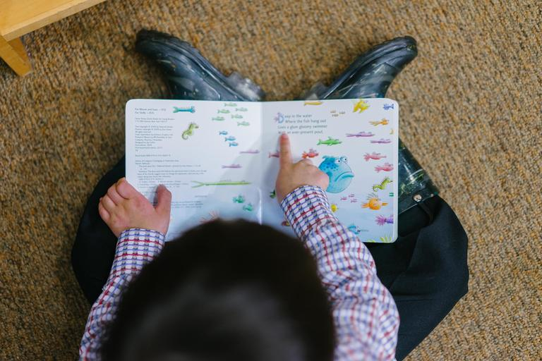 Child pointing to words in a picture book