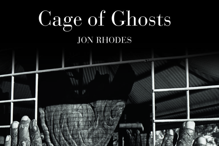 cover image of cage of ghosts book