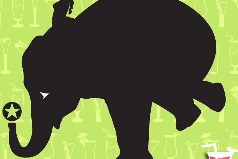 graphic of person on elephant with watermelon