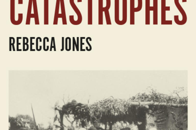 Cover image of slow catastrophes