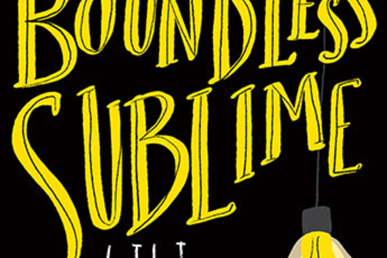 Book cover for The Boundless Sublime by Lili Wilkinson