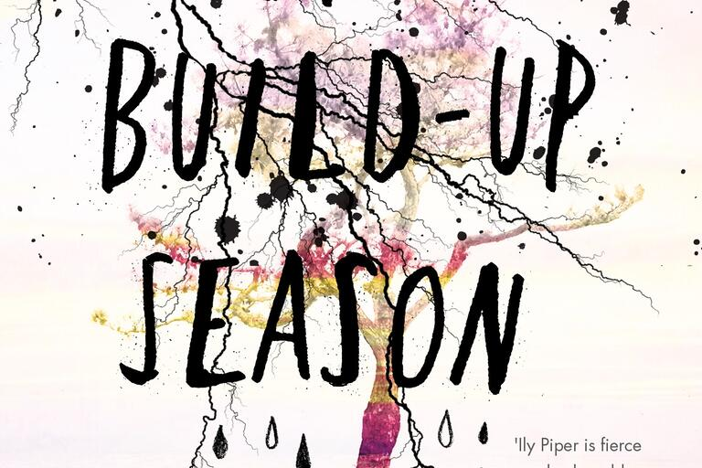 Cover image of The Build Up Season