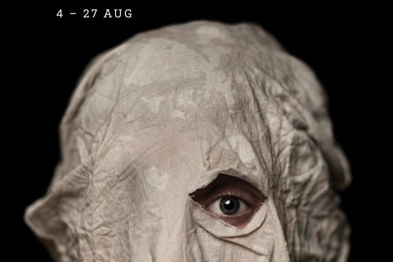 Image of the play The Real and Imagined History of the Elephant Man