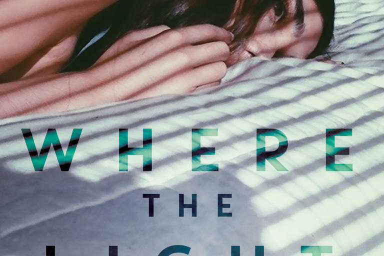 Book cover for Where the Light Falls by Gretchen Shirm