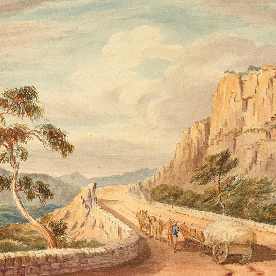 Watercolour drawing depicting bulls carrying a cart through an arid road.
