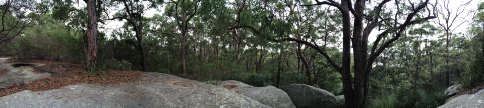 Rocks and bushland
