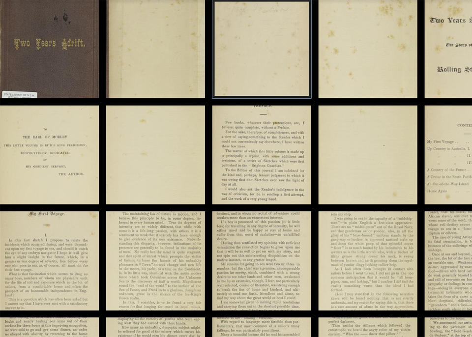 Screenshot of pages from a book