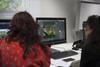 Assessing images in Adobe Bridge