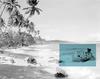 SARA OSCAR PLEASANT ISLAND (THE PACIFIC SOLUTION), 2016, C-TYPE PRINT COURTESY THE ARTIST