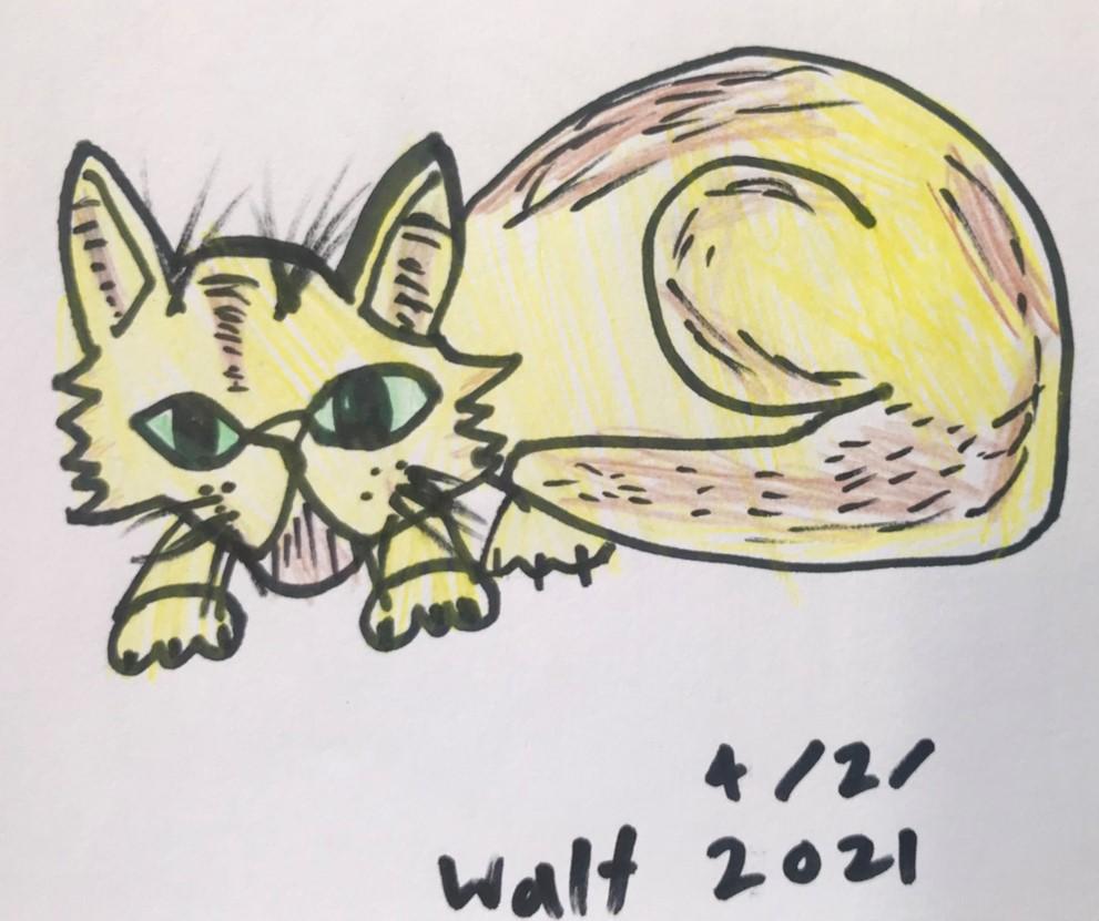 Walt - Cat