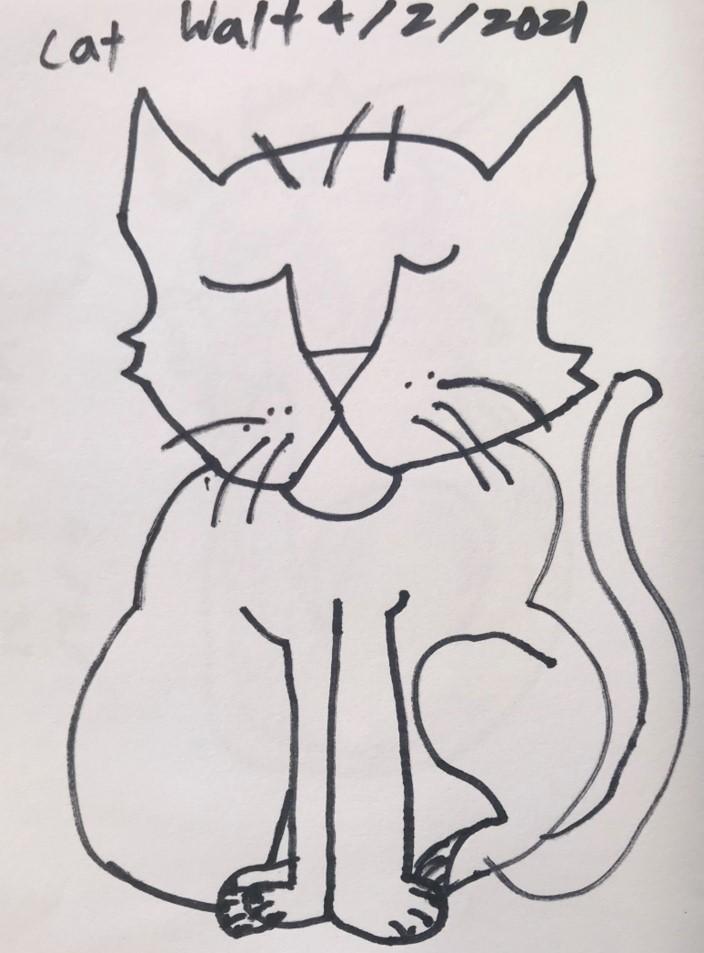 Walt - Cat 2